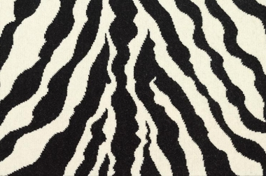 Image of the narrowloom line Pinched Zebra #21786
