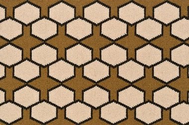 Image of Carapace #31425 Carpet in Brown, Caramel, Tan