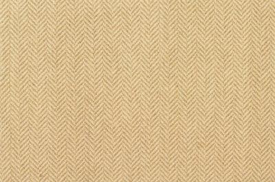 Image of Herringbone #21312 Carpet in Tan on Natural