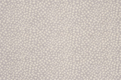 Image of Cosmos #21838 Carpet in White on Gray