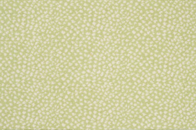 Image of Cosmos #21838 Carpet in White on Green
