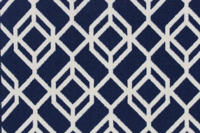 Image of Facet #21934 Carpet in White on Blue