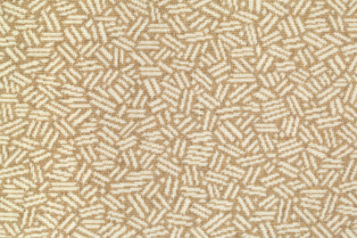 Image of Scatter #21984 Carpet in white on natural